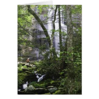 Hiker admires Falls Branch Falls Card
