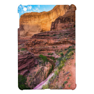 Hiking Coyote Gulch - Utah iPad Mini Covers