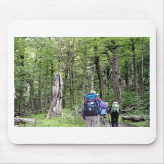 Hiking through trees, Torres del Paine Park, Chile Mouse Pad