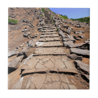 Hiking trail leading up the mountain on Madeira Ceramic Tile