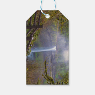 Hiking Trails at Silver Falls State Park Gift Tags