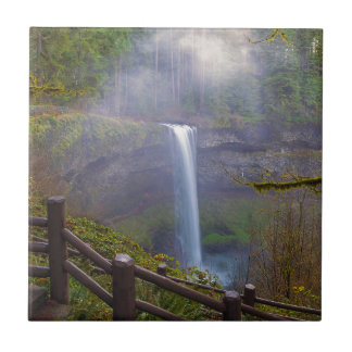 Hiking Trails at Silver Falls State Park Tile