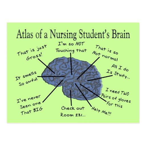 Funny Nursing Student Quotes. QuotesGram