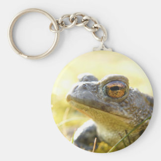 Hill End Toad Keychain