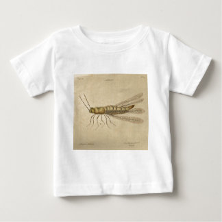 Hill_Straw-Colourd Chinch Baby T-Shirt