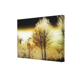 Hillsboro, OR Wetlands Canvas Print