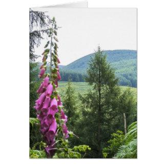 Hillside Greeting Card