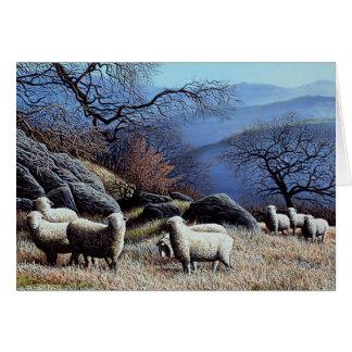 Hillside Meadow Cards