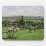 Hillside of Vesinet, Yvelines, 1871 Mouse Pad