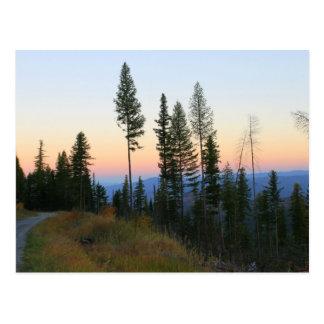 """Hillside sunset"" Postcard"