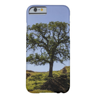 Hillside tree barely there iPhone 6 case