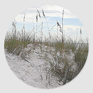 Hilton Head Island beach south caroline picture Classic Round Sticker