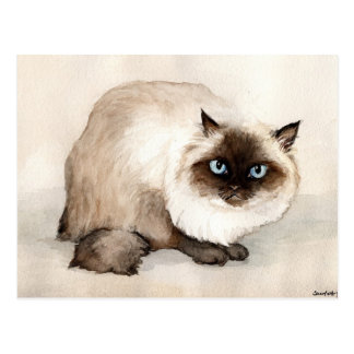 Himalayan Cat Original Art Postcard