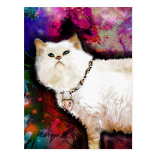 Himalayan Cat Postcard