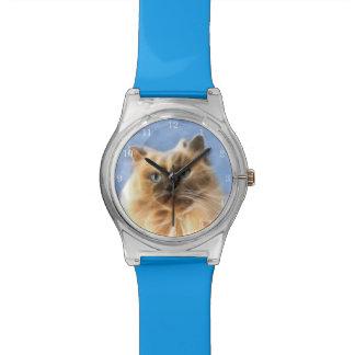 Himalayan kitty cat face watch