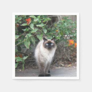Himalayan Mix Cat Disposable Napkins