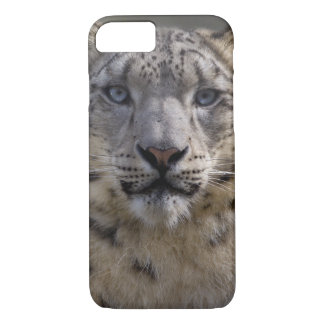Himalayan Prince iPhone 7 Case