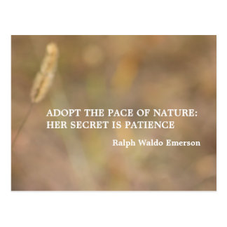"""Hint Of Nature"" Photography Art with Quote Postcard"