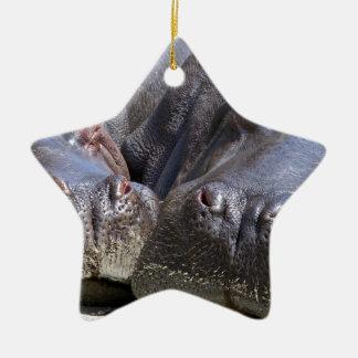 hippo-783 ceramic star ornament