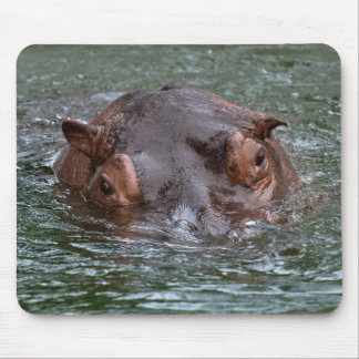 Hippo 8879 mouse pad