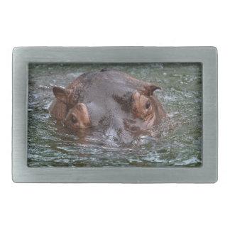 Hippo 8879 rectangular belt buckles