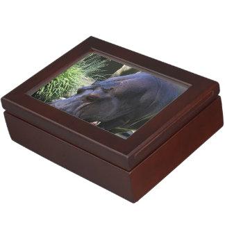 Hippo AJ17 Keepsake Box