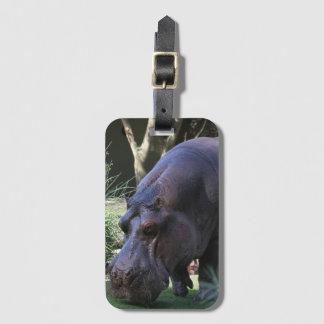 Hippo AJ17 Luggage Tag