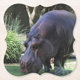 Hippo AJ17 Paper Coaster