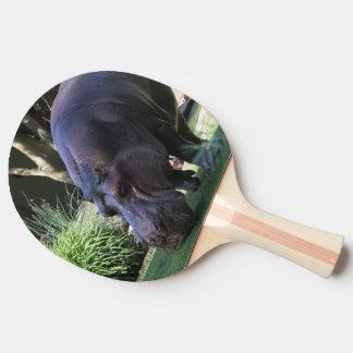 Hippo AJ17 Ping Pong Paddle