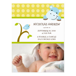 Hippo and Birdie Baby Boy Birth Announcement Postcard