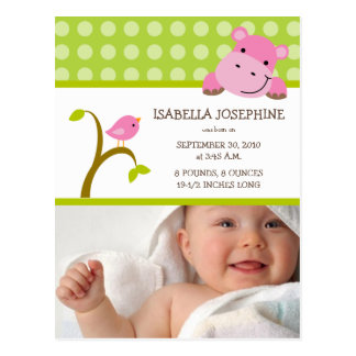 Hippo and Birdie Baby Girl Birth Announcement Postcard
