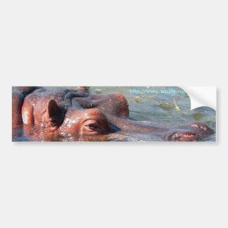 Hippo Bumper Sticker