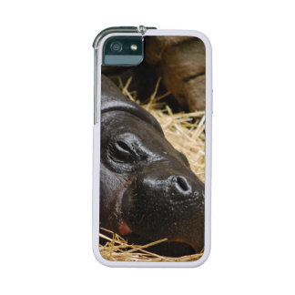 Hippo iPhone 5 Cover