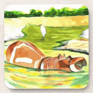 Hippo from Safari Coaster