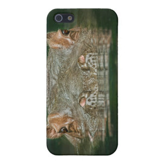 Hippo Head On iPhone 5/5S Covers