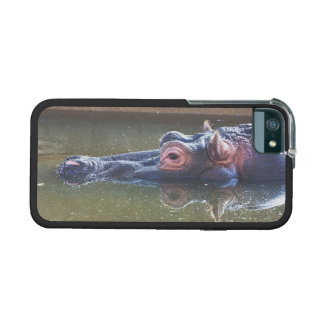Hippo In The Water iPhone 5 Covers