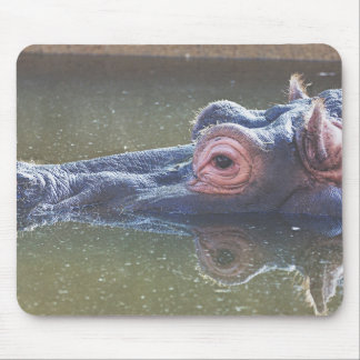 Hippo In The Water Mouse Pad