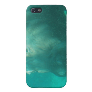 Hippo Under Water iPhone 4 Case
