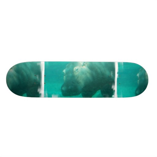 Hippo Under Water Skateboard