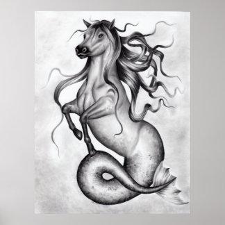 Hippocampus Poster