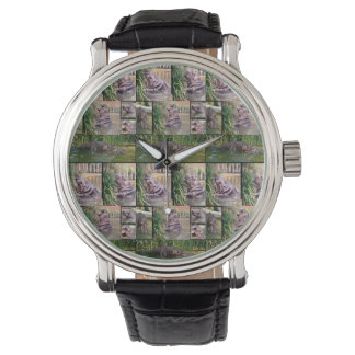Hippopotamus Photo Collage, Mens Watch