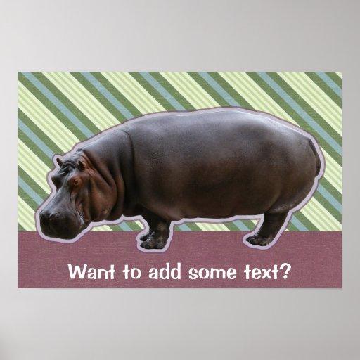 Hippopotamus Poster Print