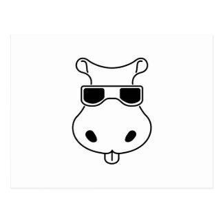 Hippopotamus Sunglasses Love Hippos Fiona Baby Postcard