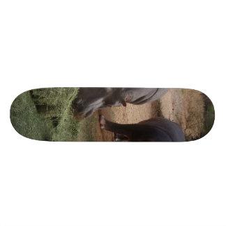 hippos custom skate board