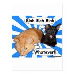 Hippy Kitty Blah Blah Blah Whatever!! Postcard