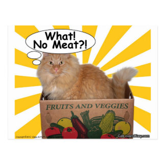 Hippy Kitty What! No Meat?! Postcard