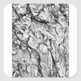 hipster effect texture square sticker