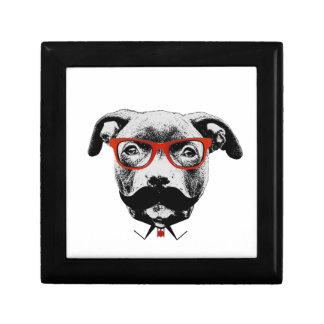 Hipster Pit Bull Terrier Jewelry Boxes
