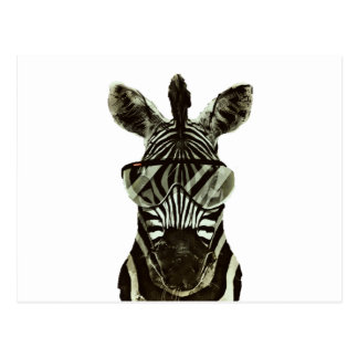 Hipster Zebra Postcard