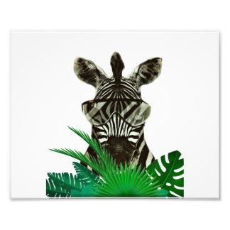 Hipster Zebra Style Animal Photo Print